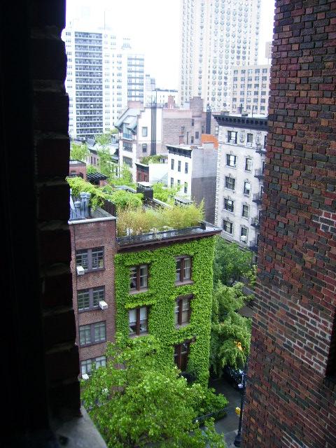 最初に暮らし始めた寮の窓からの景色。。。