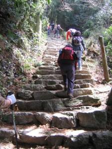 100段だんぎ(本当に階段が100段ありました!)