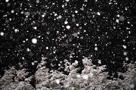 雪が降る~。